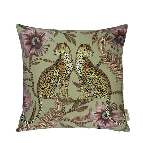 Ardmore Lovebird Leopards Delta