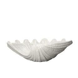 Bowl Shell