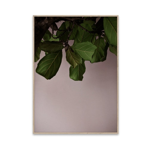 Green leaves, poster