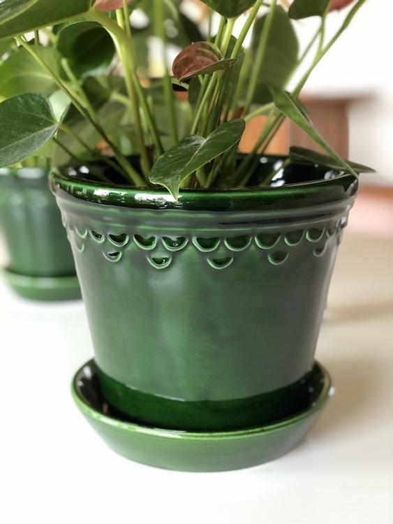 Kruka Københavner med fat, Bergs Potter, 18 cm, grön
