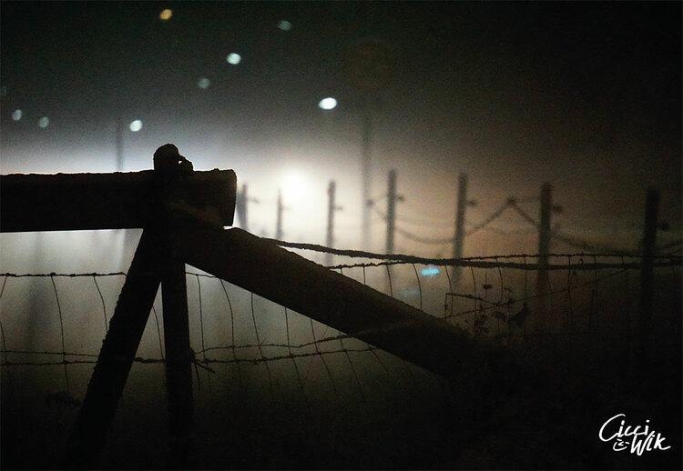 Staket i dimma i Skived 2 foto Cicci Wik