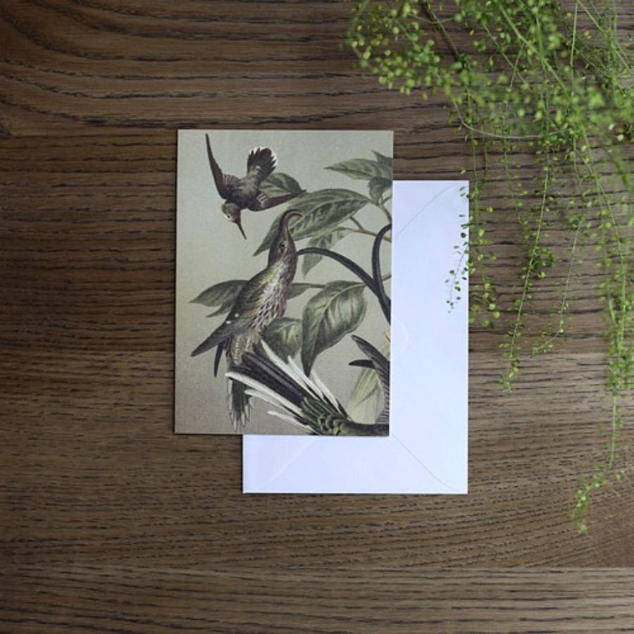 Card, Hummingbirds. Hummingbirds gratulationskort. FSC märkt med matchande vitt kuvert. Tryckt på matt papper i måtten 12x17 cm. The Arni Concept