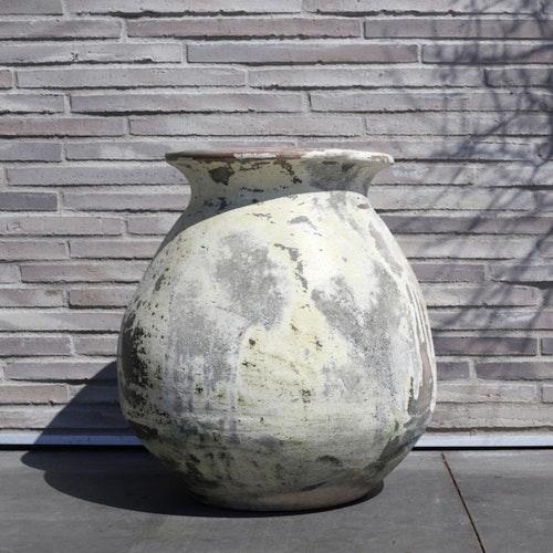 PotGoliat,60x60 cm