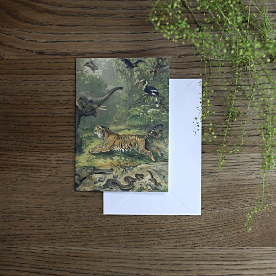 Card, Oriental Fauna. Oriental Fauna gratulationskort. Bilden fortsätter på baksidan. FSC märkt med matchande vitt kuvert. Tryckt på matt papper i måtten 12x17 cm. The Arni Concept