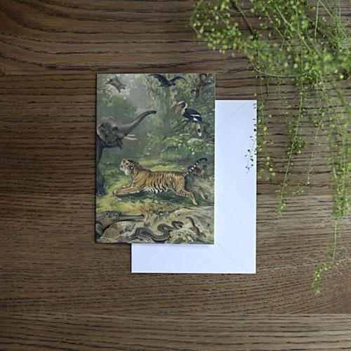 Card, Oriental Fauna