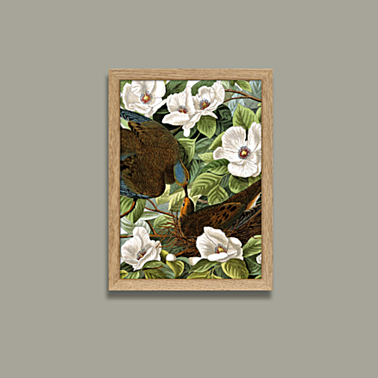 Turtle Dove - Mini Print. Två duvor omgivna av ömtåliga blommor som påminner oss om hur bräcklig och betydelsefull kärleken är.15x21 cm / Med ram 17x23 cm. The Arni Concept