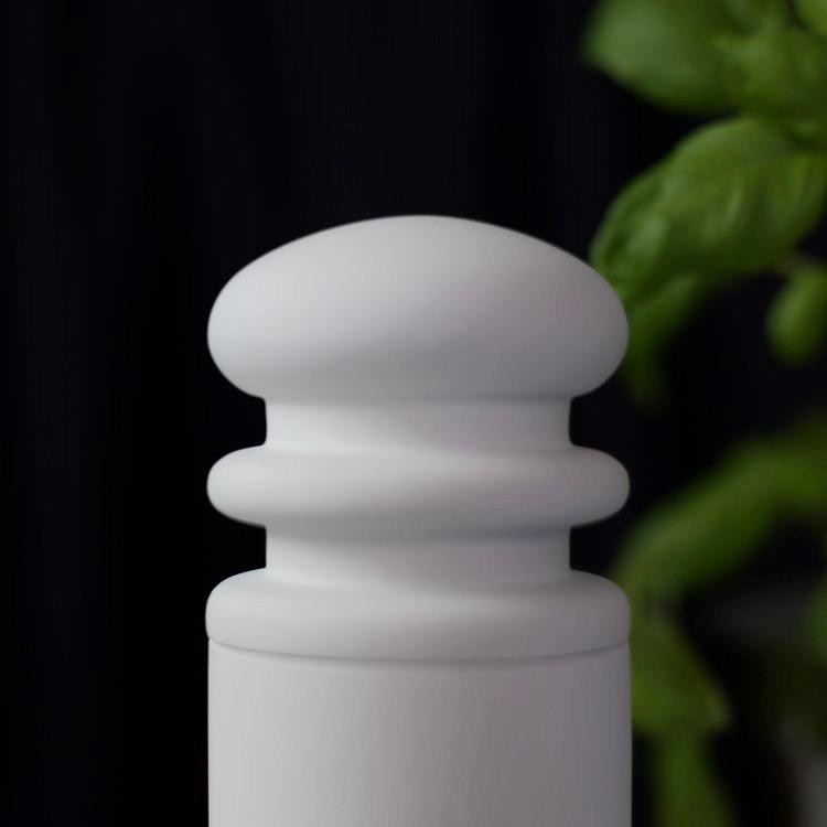 Kryddkvarn Bok, Salt