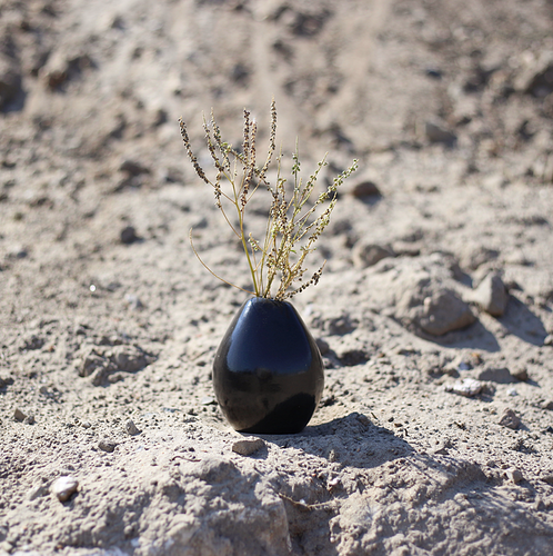 Black Egg Vase