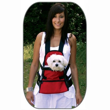 Front Carrier, Medium, Red