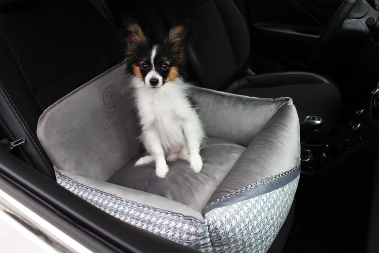 bilstol-hund