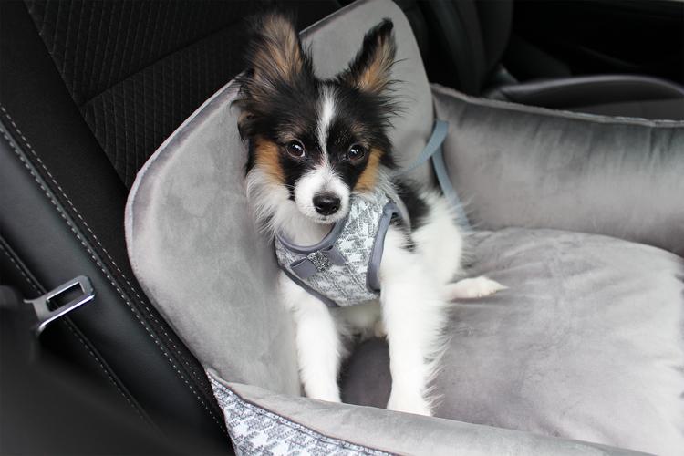 Bilstol till hund Glamour, Grå