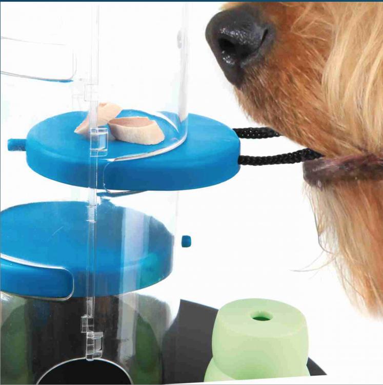 gambling-tower-aktivitetsleksak-hund