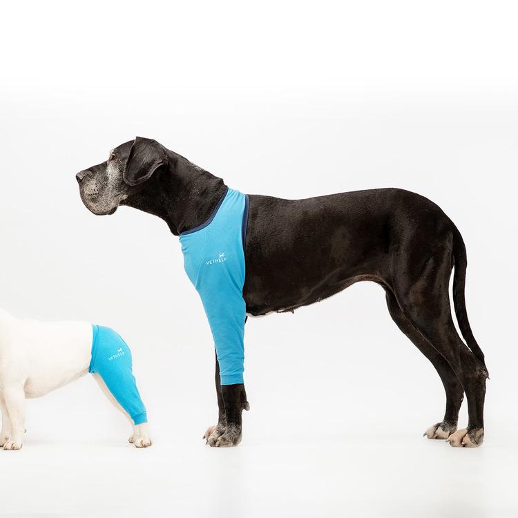 operationsdrakt-benskydd-framben-hund