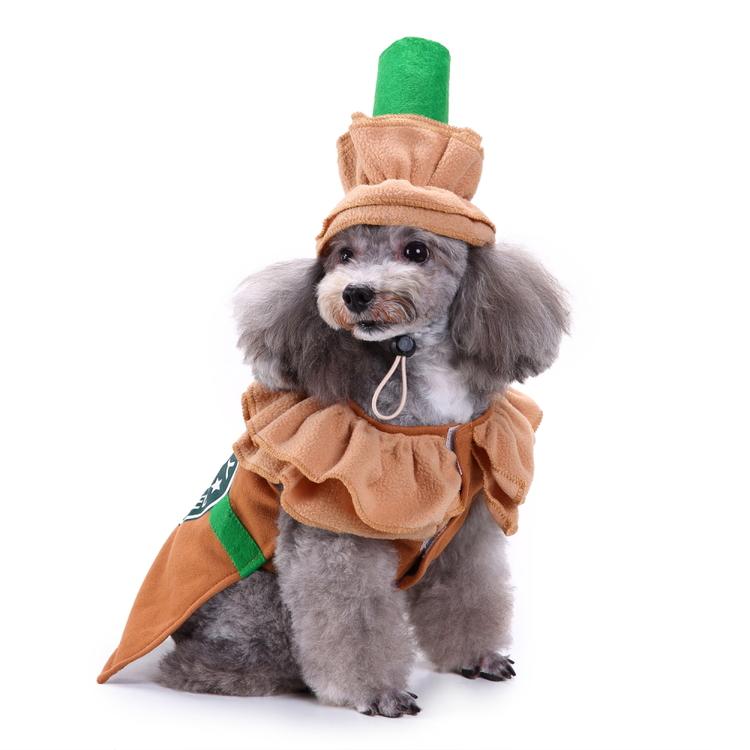 Stardoggy, Maskeraddräkt till hund