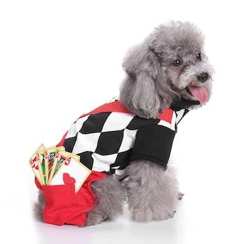 Gambler, Maskeraddräkt till hund