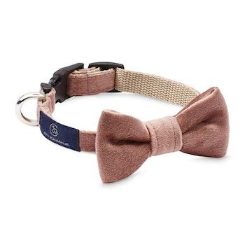 Halsband Bow-tie Powderpink