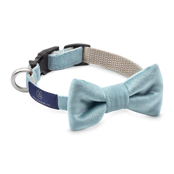 Halsband Bow-tie Celeste