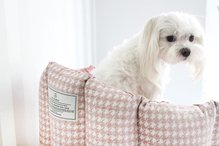 Glamour hundbädd, Rosa