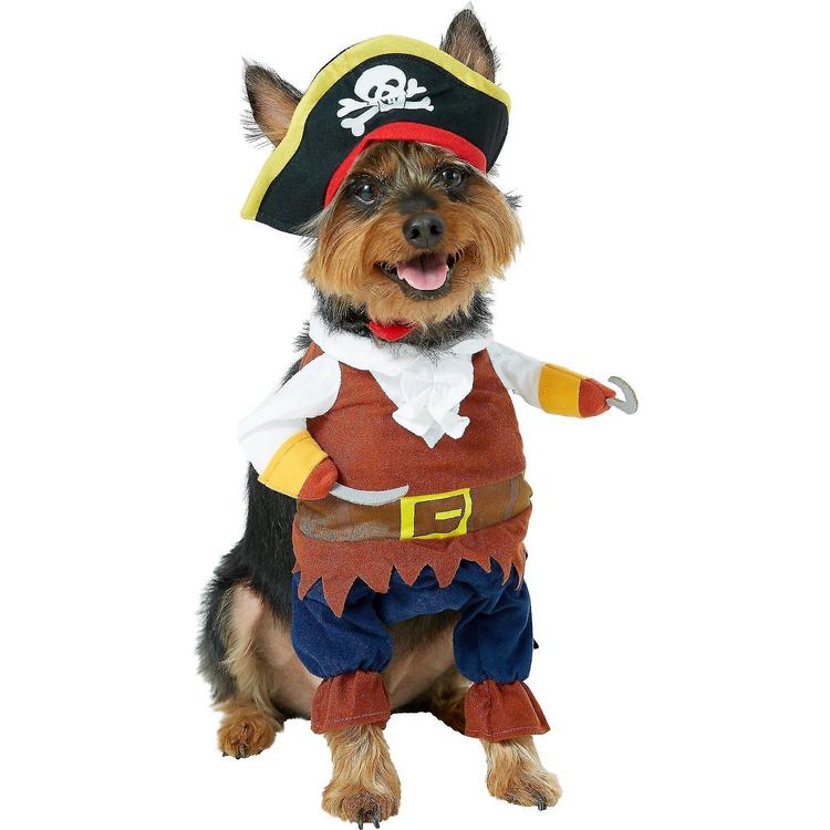 Pirat, Maskeraddräkt till hund