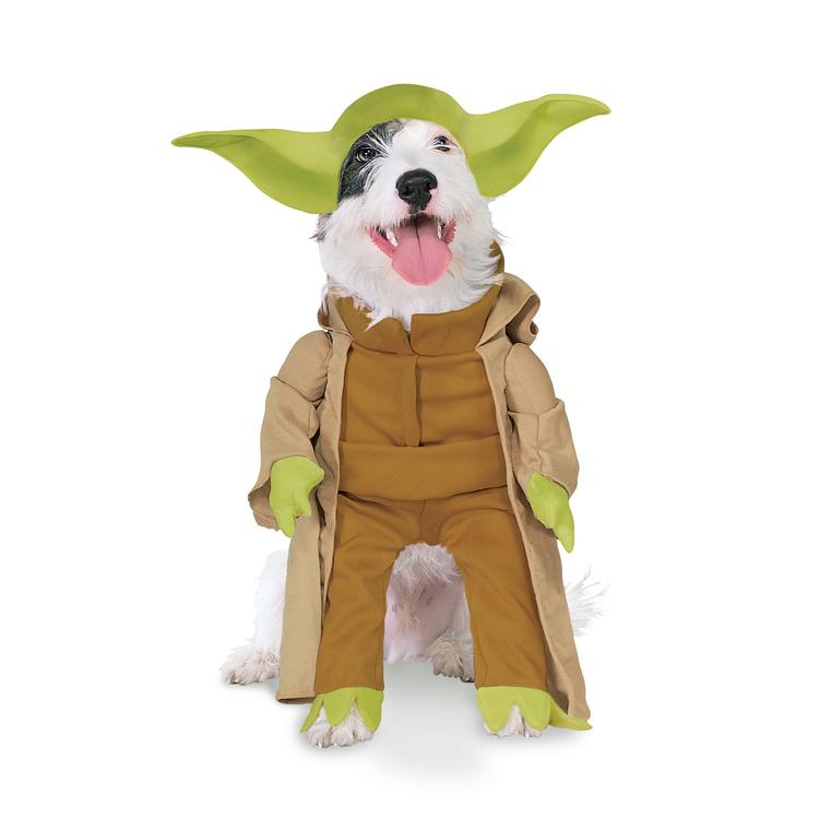 hund-klader-maskerad-yoda