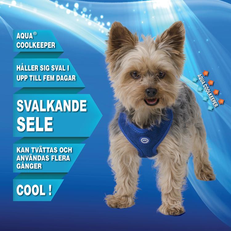 Aqua Coolkeeper - Kylande Sele, Blå