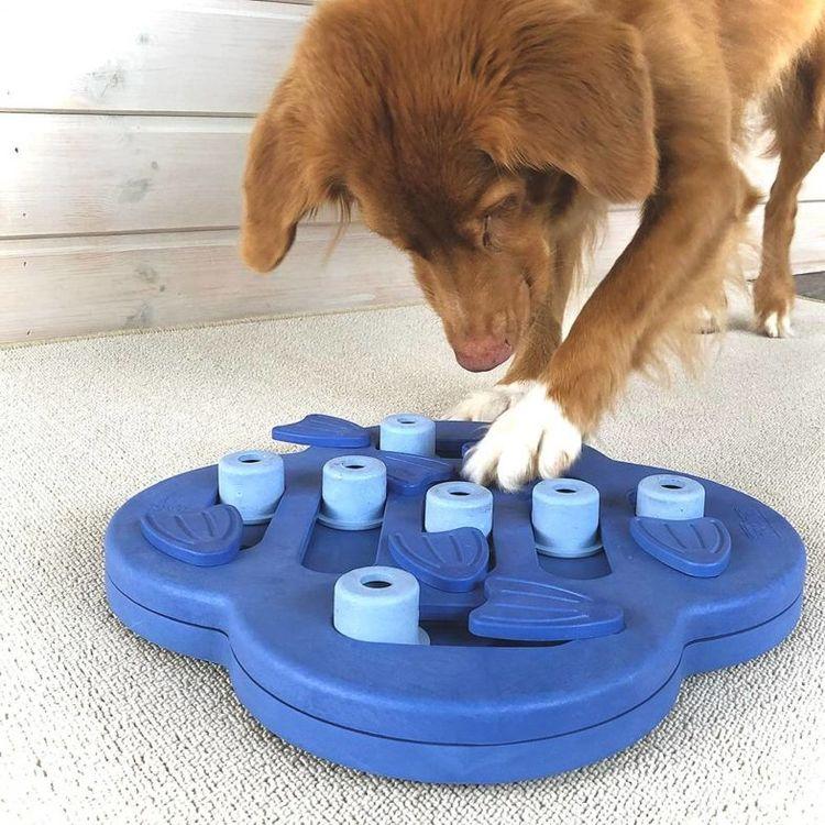 Dog Hide n'Slide - nivå 2 - Nina Ottosson