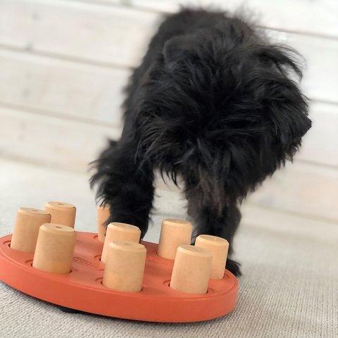 Dog Smart Komposit - nivå 1 - Nina Ottosson