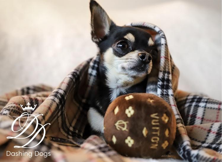 Dog Diggin Design Chewy Vuiton Boll Brun