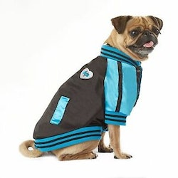 Vanderpump Pets Baseball Jacket, Blue