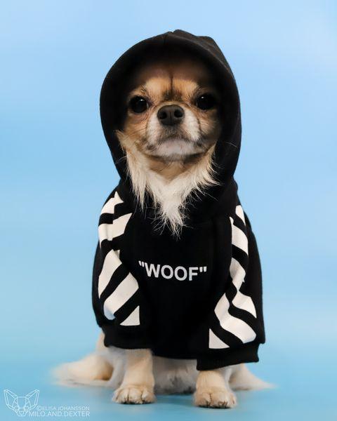 Woof Hoodie Svart