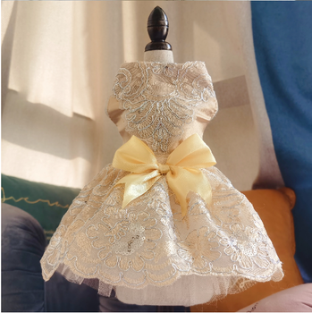 Princess Dress Gold
