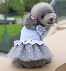 Yarn & Tutu Dress