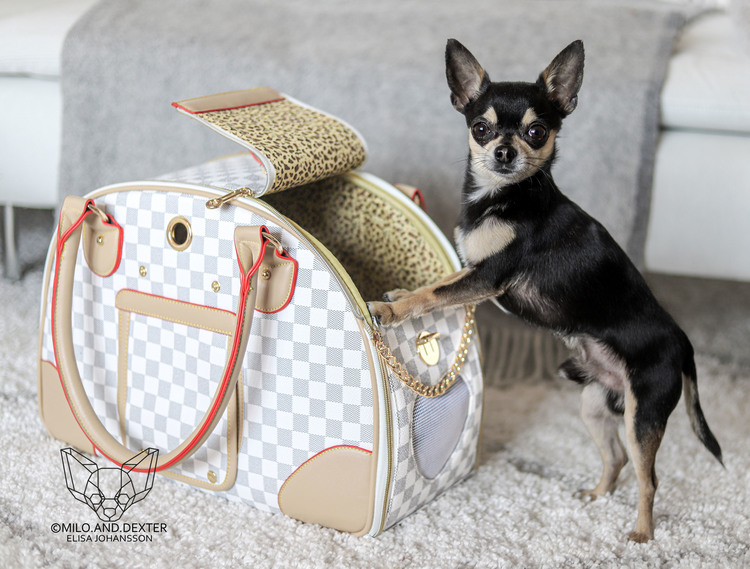 Fashion Bag Checker