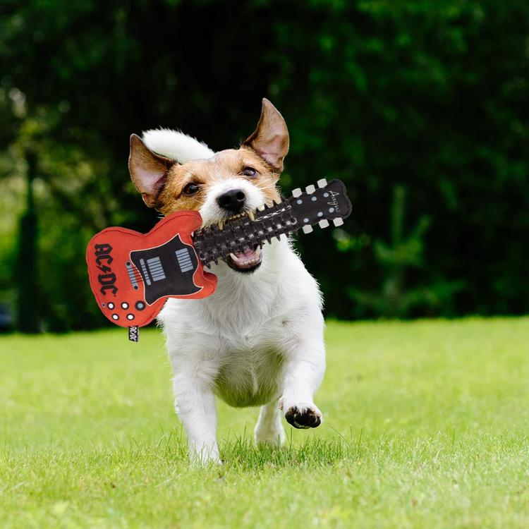AC/DC Dog Teethers