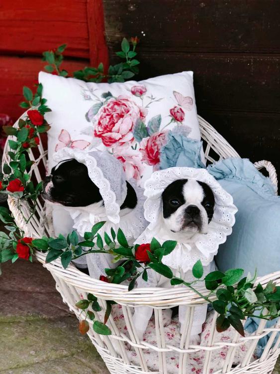 Sleepy Sally Pajamas