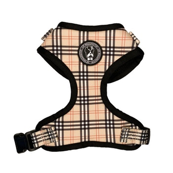 Check it out Tartan Harness