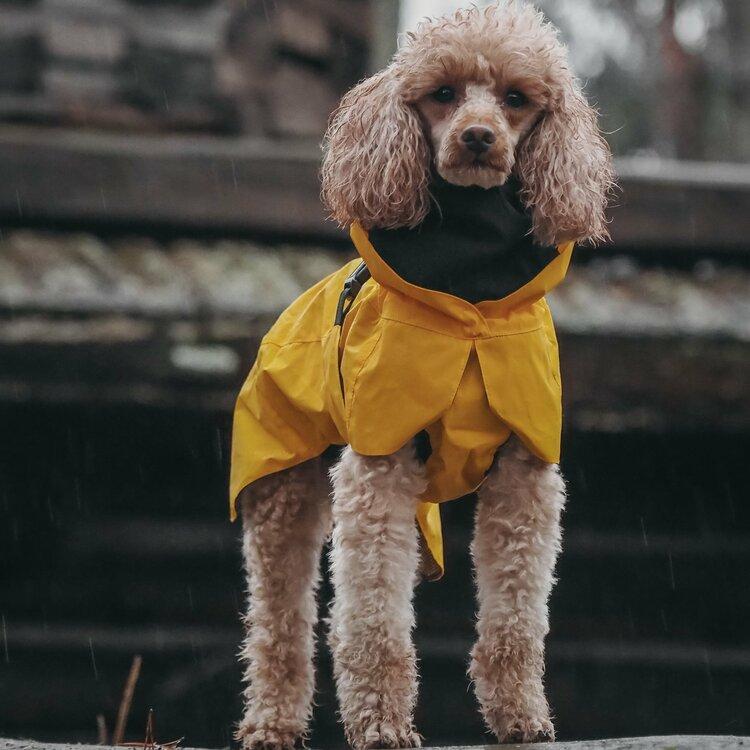 PAIKKA Visibility Raincoat Lite yellow