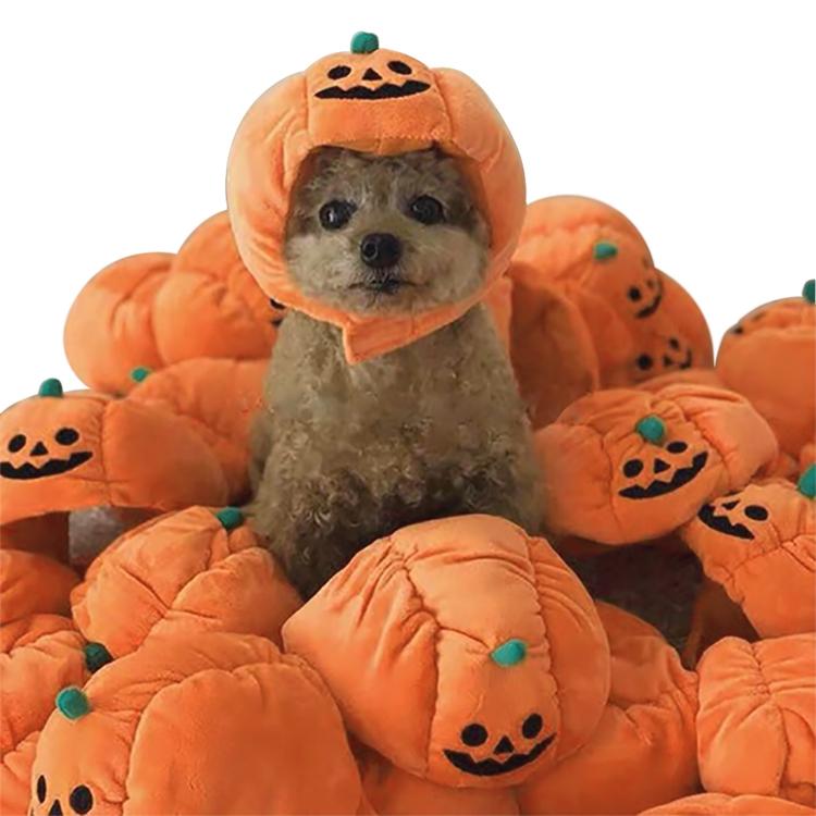 Halloweenhatt Pumpa