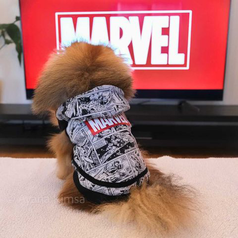Hundtröja Marvel