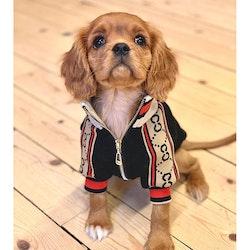 Fashion Sweater Zipper