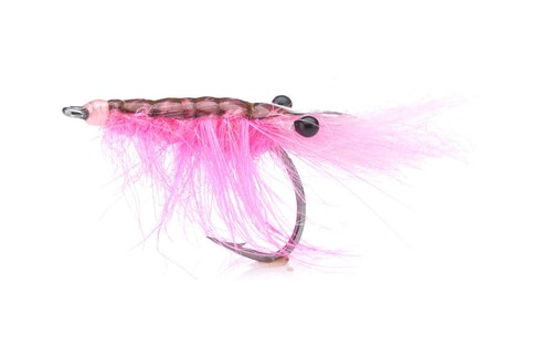 John Shrimp Hot Pink