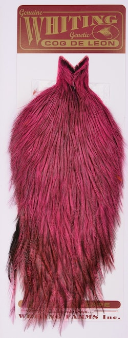 Whiting Coq de Leon Cape Badger dyed Pink