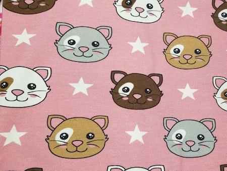 Katter rosa