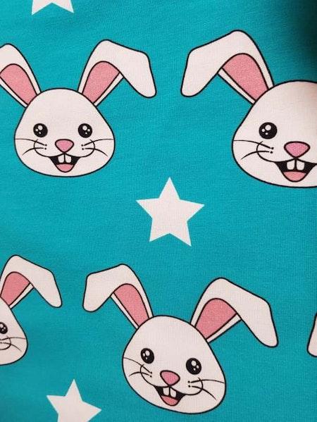 Kaniner Turkos