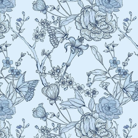 Iris blå