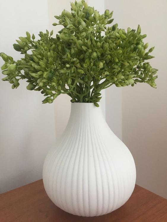Kvist - Grön - 20 cm