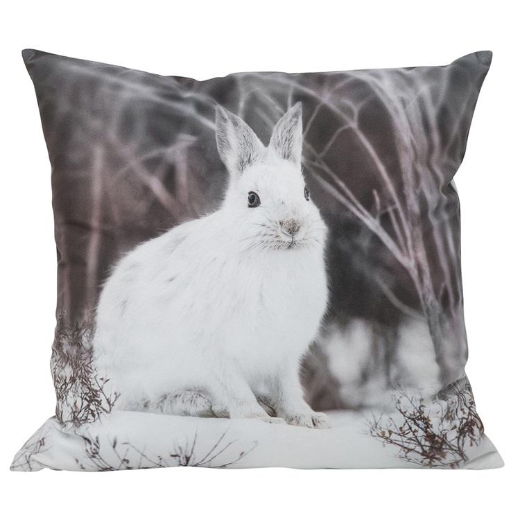 Kuddfodral - Hare