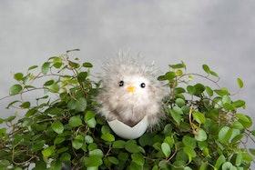 Kyckling i ägg - 5 cm