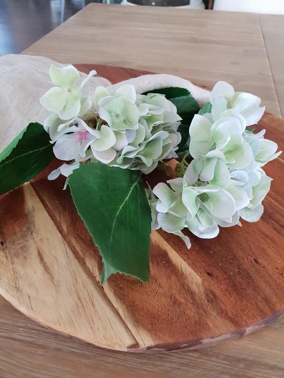 Hortensia - kvist - 25 cm