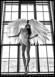 Angel Woman In Window Poster
